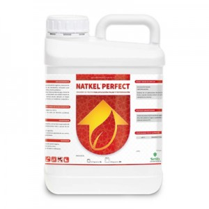 Natkel Perfect 5L