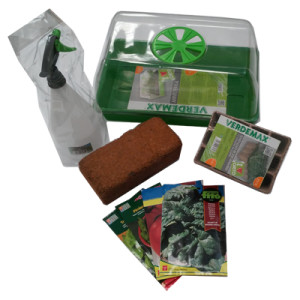 Kit siembra con germinador